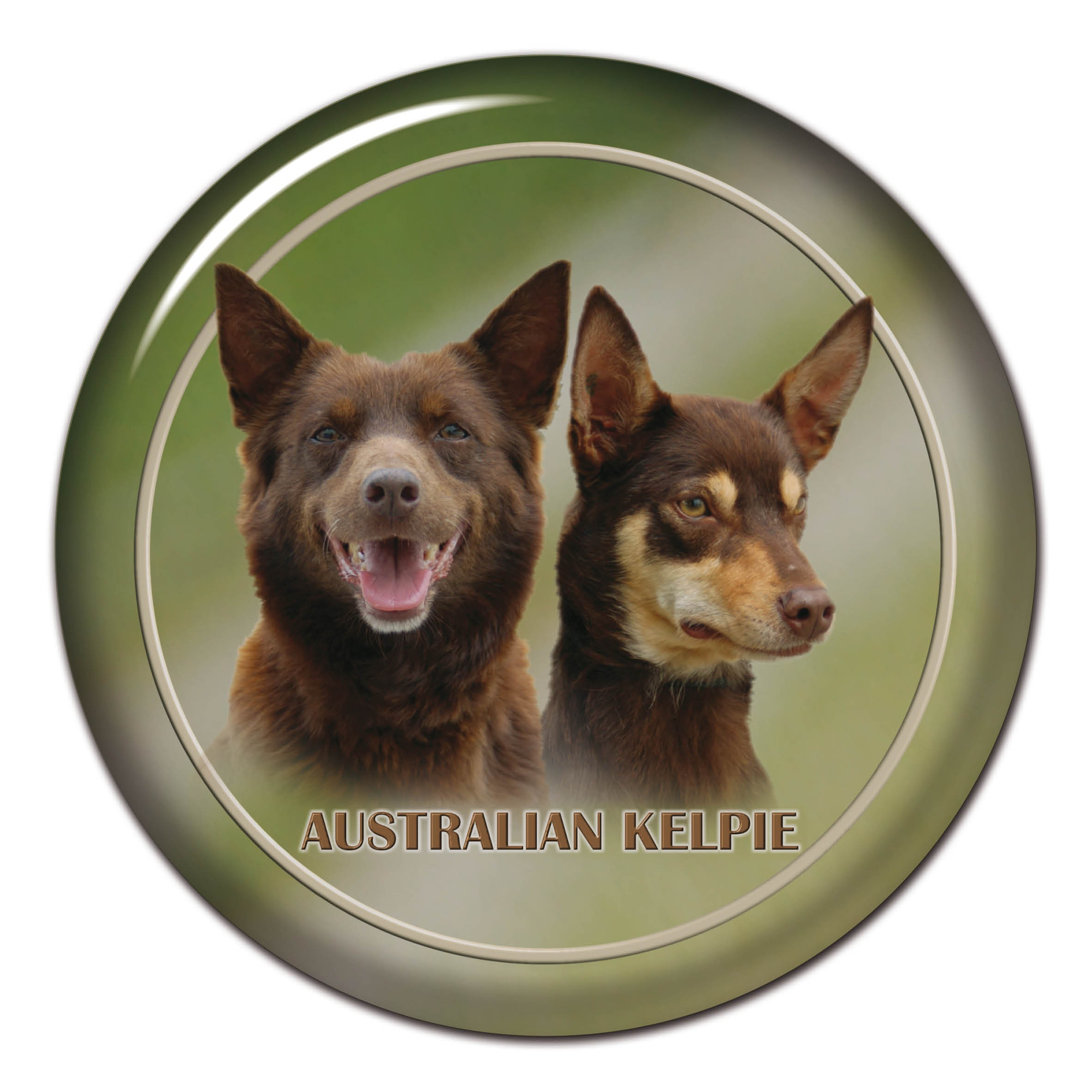Swell 3D Sticker Australian Kelpie 101 C From Alldogstickers Com Pdpeps Interior Chair Design Pdpepsorg
