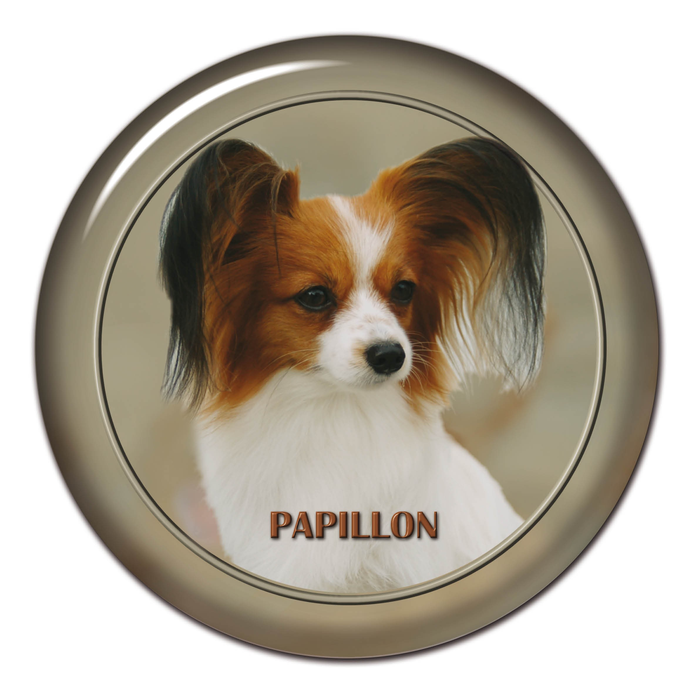 3d sticker papillon 101 c from dog breed stickers not only for your car