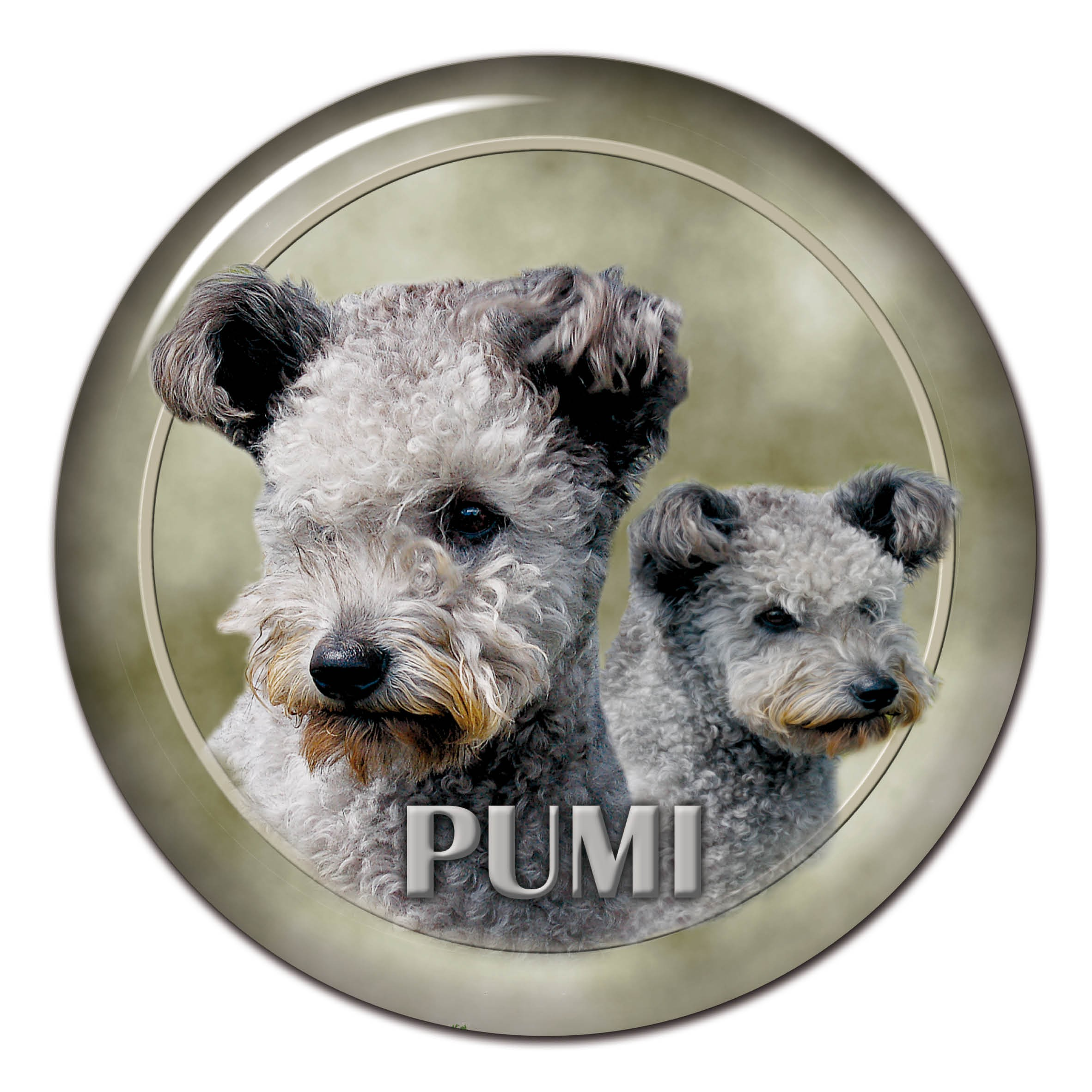 3D sticker Pumi 101 C from AllDogStickers.com - dog breed stickers ...