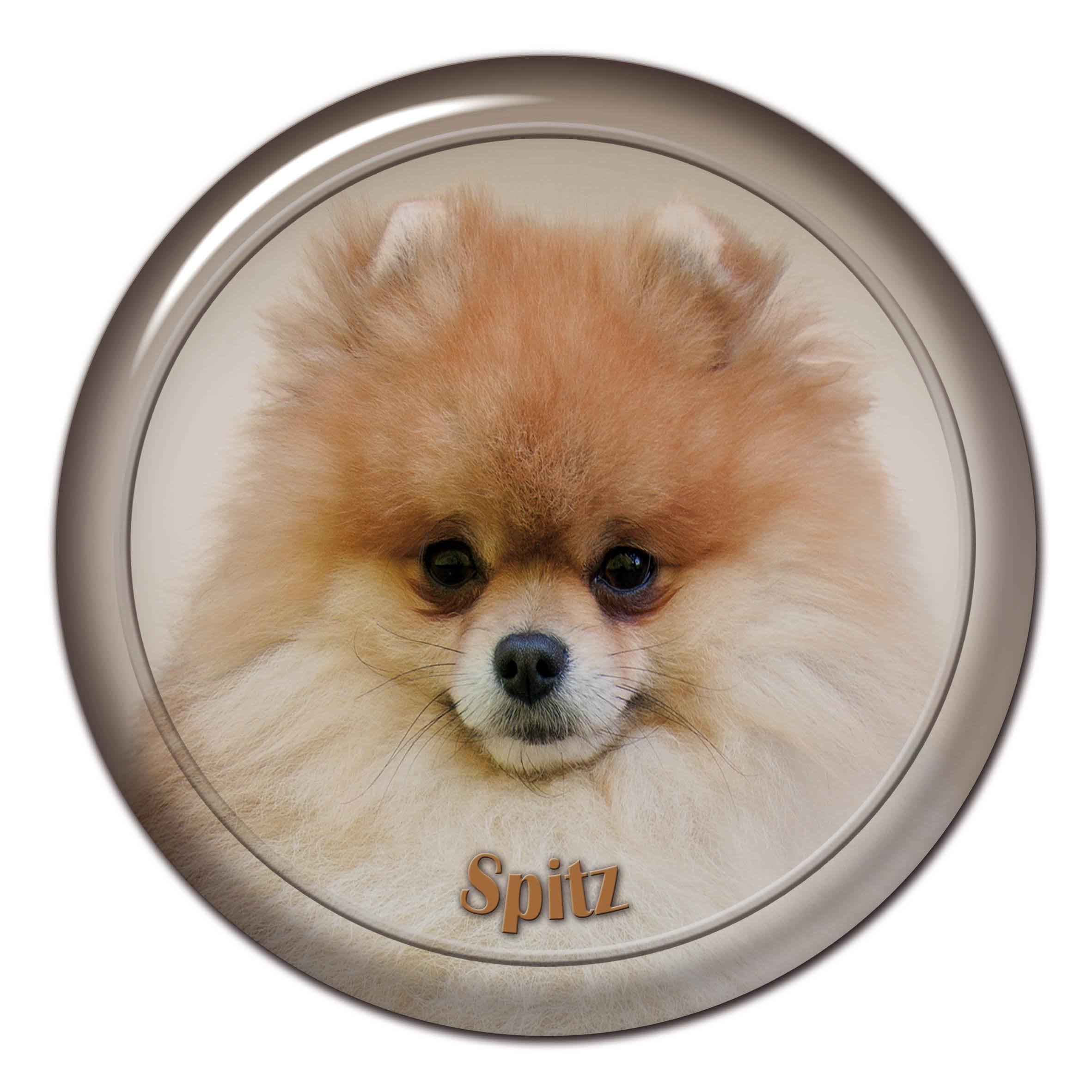 3d Sticker Spitz 101 C From Alldogstickerscom Dog Breed Stickers