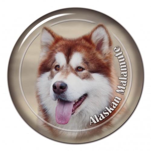 3D sticker Alaskan Malamute 101 C