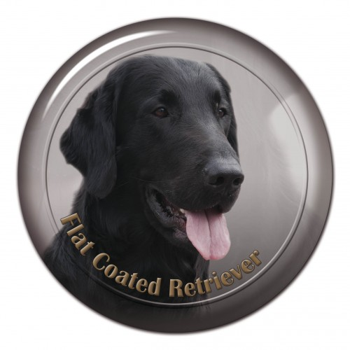 3D sticker Flat Coated Retriever 101 C