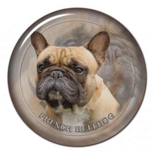 3D sticker French Bulldog 101 C