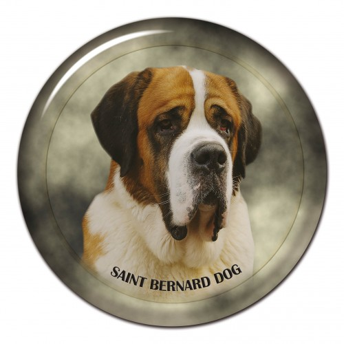 3D sticker Saint Bernard Dog 101 C