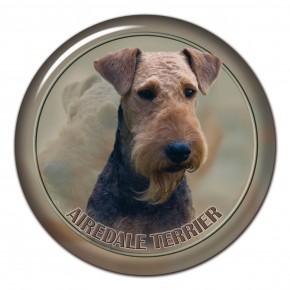 Aierdale Terrier 101 C