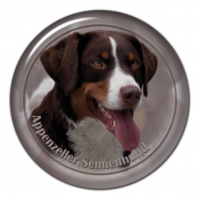 Appenzeller Seenenhund 102 C