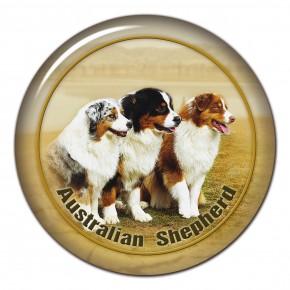 Australian Shepherd 101 C