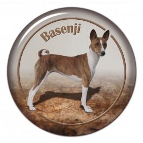 Basenji 102 C
