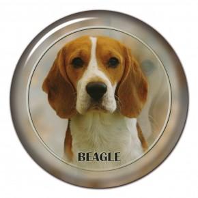 Beagle 101 C