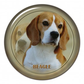 Beagle 102 C