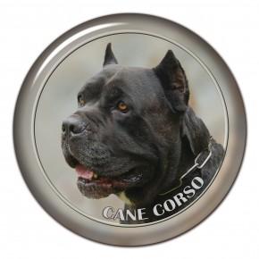 Cane Corso 101 C