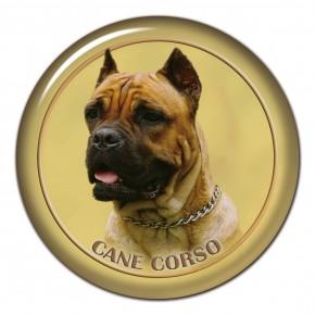 Cane Corso 102 C
