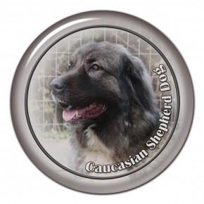 Caucasian Shepherd Dog 102 C