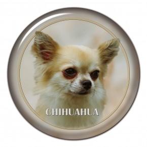 Chihuahua 102 C