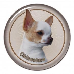Chihuahua 105 C