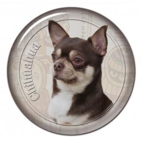 Chihuahua 106 C