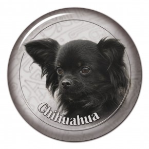 Chihuahua 107 C