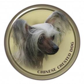 Chinese Crested Dog 102 C