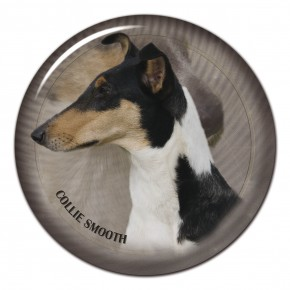 Collie Smooth 102 C
