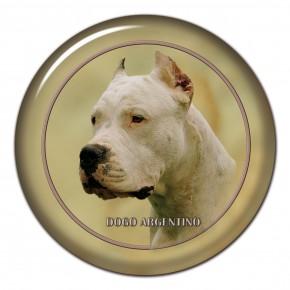 Dogo Argentino 101 C