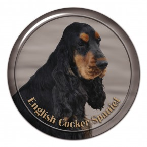English Cocker Spaniel 103 C
