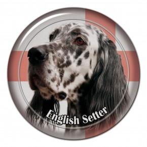 English Setter 101 C