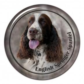 English Springer Spaniel 101 C