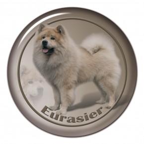 Eurasier 103 C