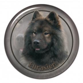 Eurasier 104 C