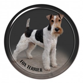 Fox Terrier Wire 101 C