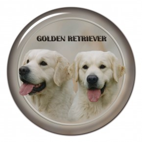 Golden Retriever 101 C