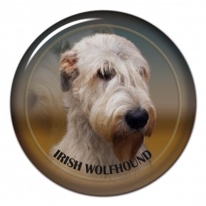 Irish Wolfhound 101 C