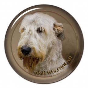 Irish Wolfhound 102 C