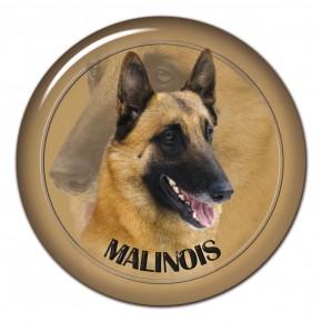 Malinois 101 C