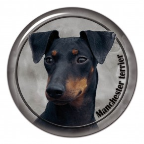 Manchester Terrier 102 C