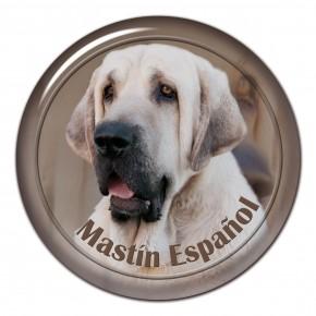Mastin Espaniol 101 C