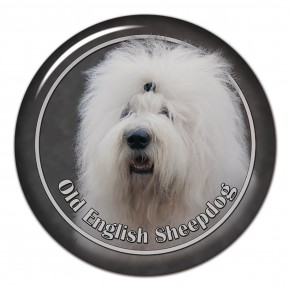 Old English Sheepdog 102 C