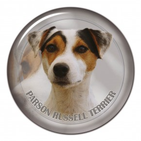 Parson Russell Terrier 101 C