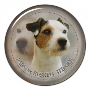 Parson Russell Terrier 102 C