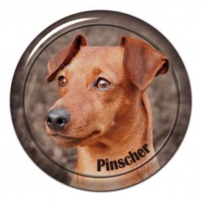 Pinscher 102 C