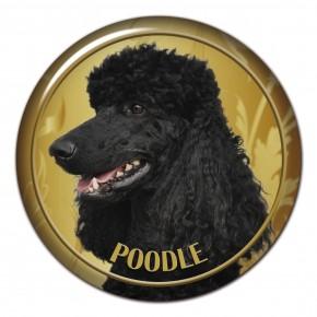 Poodle 101 C