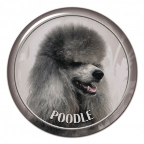 Poodle 102 C