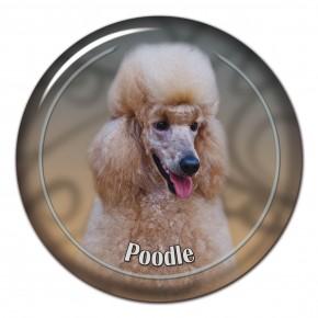 Poodle 104 C