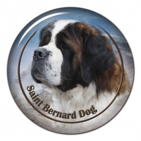 Saint Bernard Dog 102 C