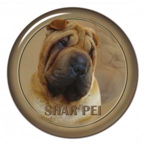 Shar Pei 101 C