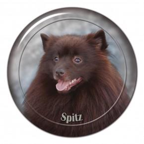 Spitz 103 C