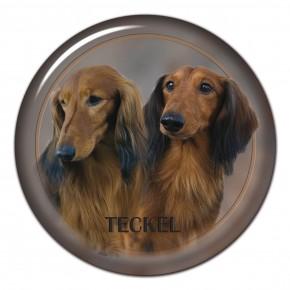 Teckel 301 C