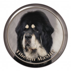 Tibetan Mastiff 101 C