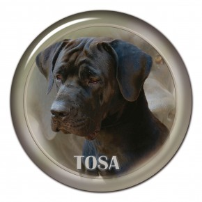 Tosa 101 C