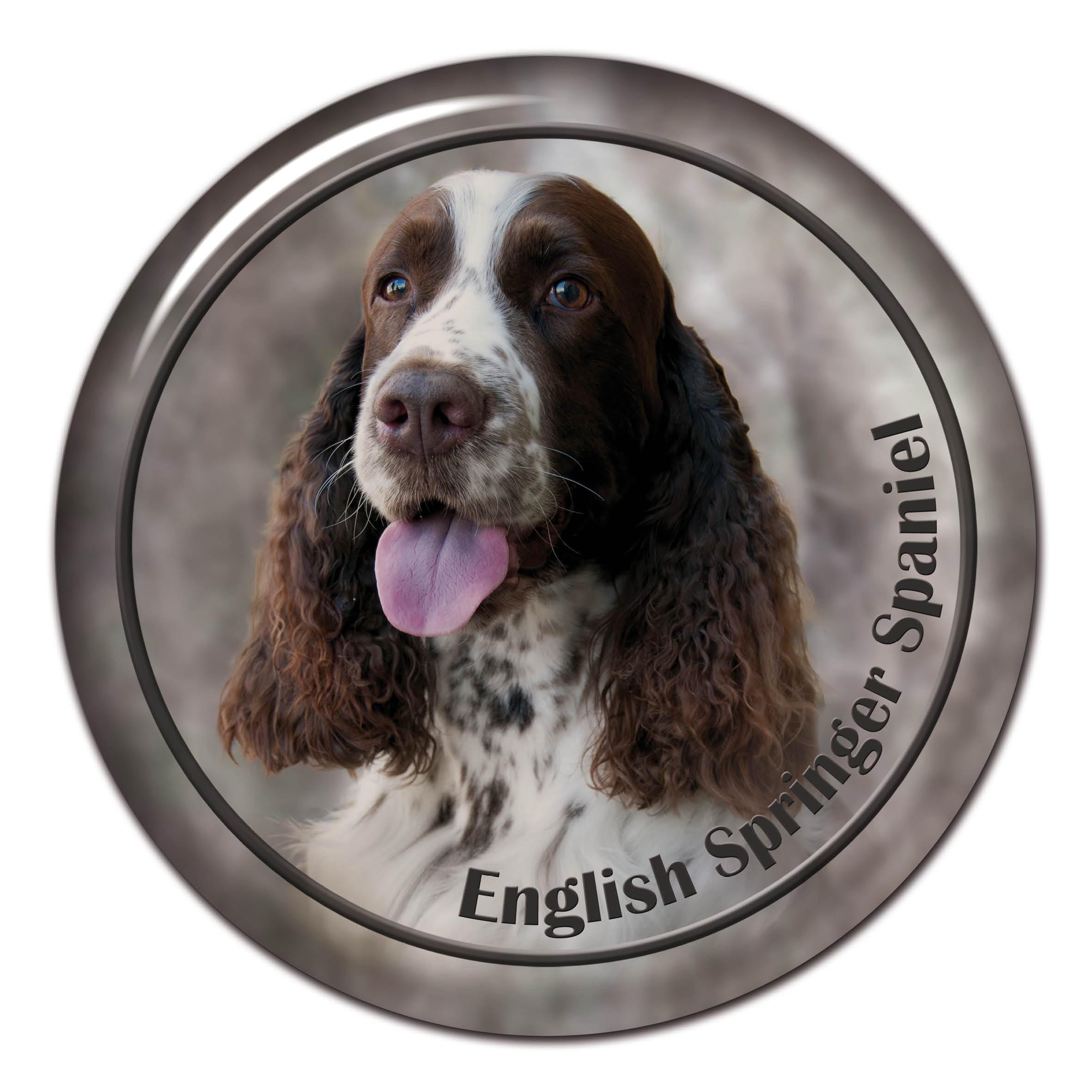 3D sticker English Spr...